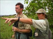 Zoologists and Wildlife Biologists :: Summary